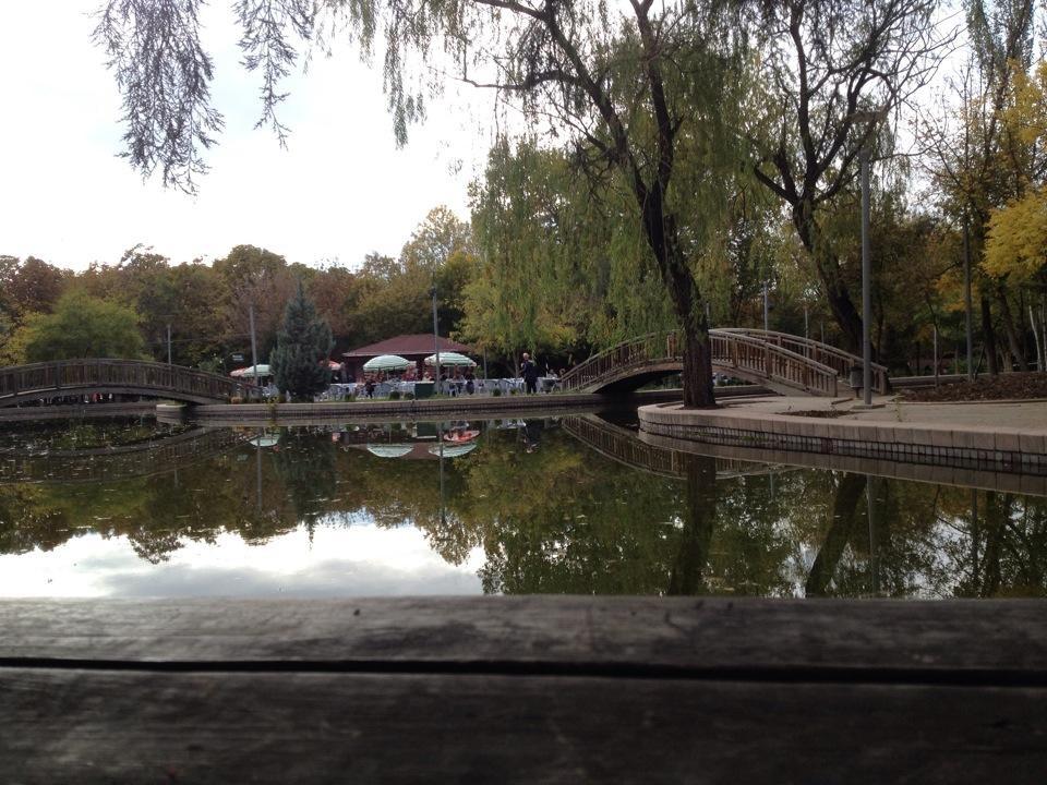 Kur(t)uluş Parkı